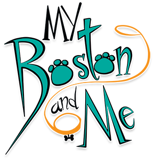 My Boston and Me – Children's Book Series
